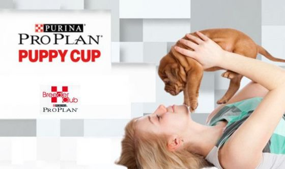 Pro Plan® puppy cup