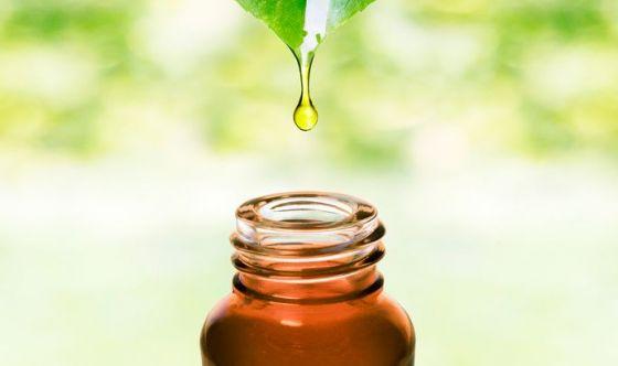 Cosmetici bio e naturali: perché sceglierli