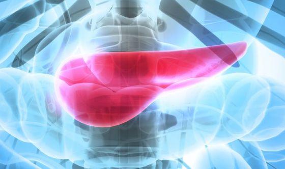 Tumore del pancreas: olaparib raddoppia la sopravvivenza