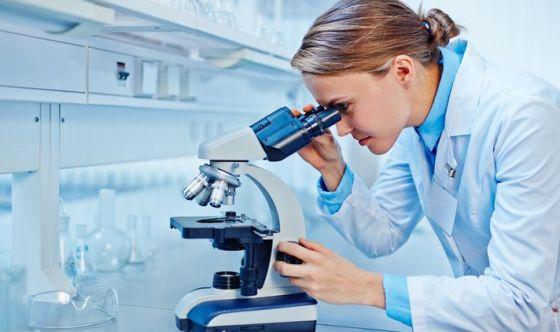 Scoperte le basi molecolari di Alzheimer e Parkinson