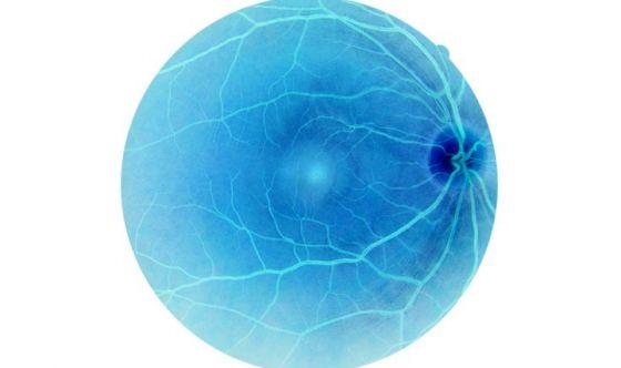 Una retina artificiale per recuperare la vista