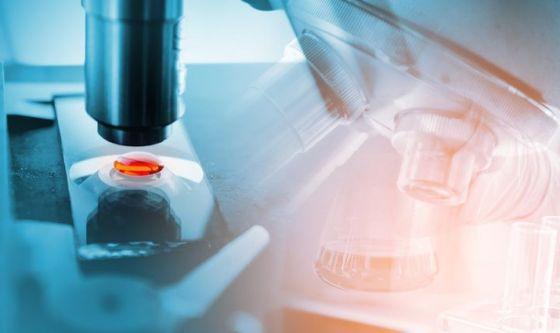 Compreso meglio il legame tra microbioma e sclerosi multipla