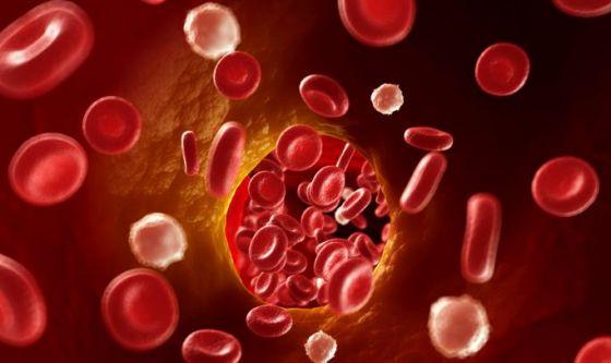 Scoperta sostanza che converte colesterolo buono in cattivo
