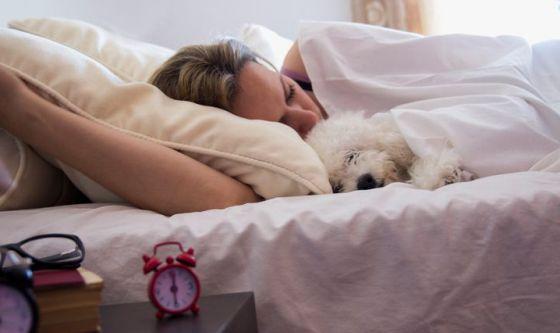 Lo studio: dormire con il cane fa bene