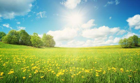 Il contatto con la natura e lo sviluppo cognitivo