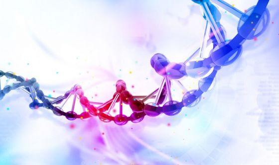 La genetica e il rigetto nei trapianti