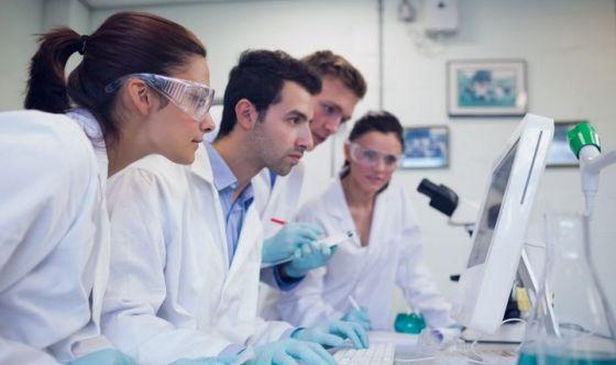 Glioblastoma riprodotto in provetta, si studiano nuove cure