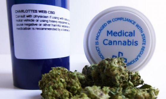 L'uso di cannabis in adolescenza e gli eventi psicotici