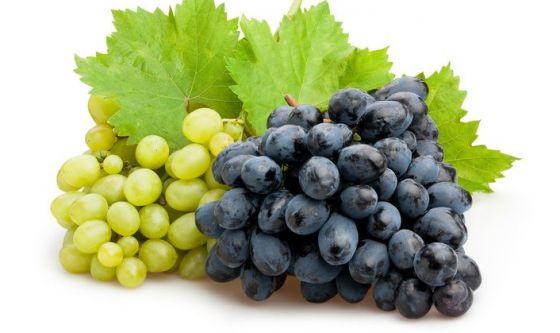 Grazie all'uva è possibile prevenire l'Alzheimer