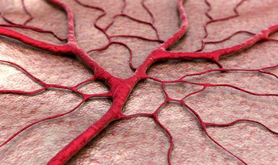 Vasi sanguigni realizzati in laboratorio