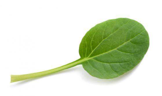 Tatsoi, il vegetale per cuore e sistema immunitario