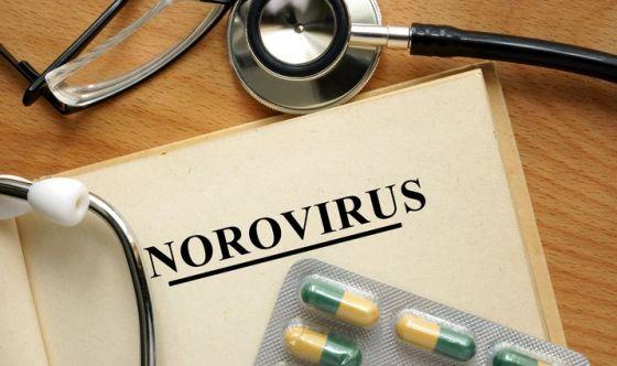Norovirus: il virus che sta mettendo in ginocchio l'Europa