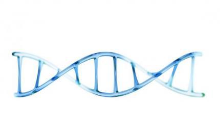 L'origine dell'autismo va ricercata nel DNA