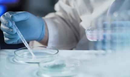 Una proteina umana come antibiotico