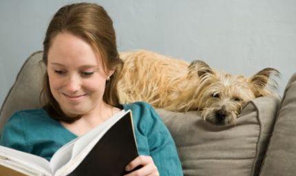 Books e Pets: libri e animali contro l'abbandono
