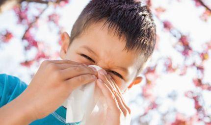 Cambiamenti climatici, allergie in aumento