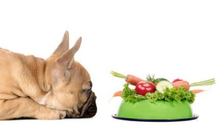 Frutta e verdura gli fanno bene?