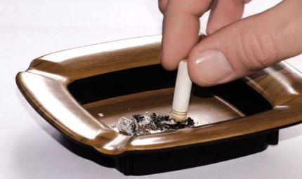 Il fumo fa male a micio e fido