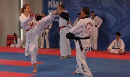Gerini cintura nera di Taekwondo