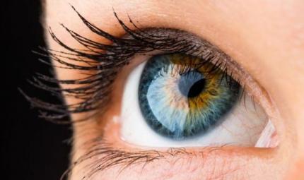 Cosa può rivelare l'iridologia