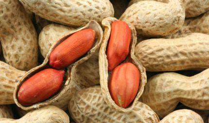 Nuove speranze di trattamento per le allergie alimentari