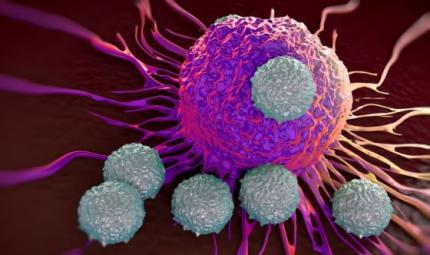 Cancro bersaglio mobile, come colpirlo