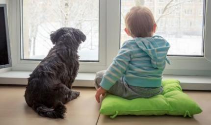 6 buoni motivi per far crescere i bimbi in compagnia dei pet