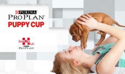 Pro Plan® puppy cup