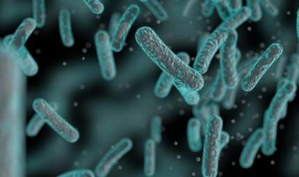 Uccidere i microbi può essere rischioso anche per noi