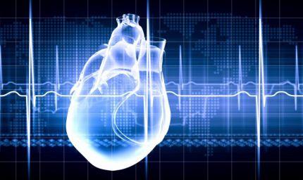 Scoperta proteina che mantiene giovane il cuore