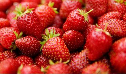 Scorpacciate di fragole per diminuire il colesterolo