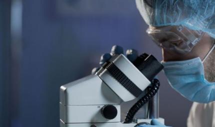 Studio scopre un nuovo meccanismo per affamare il cancro