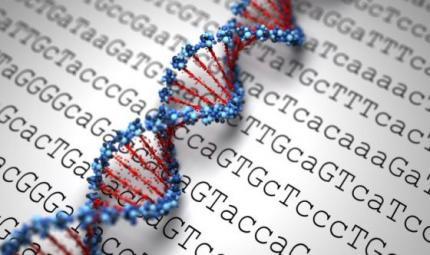 Lo yoga agisce sul DNA