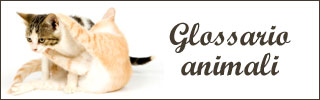 Glossario animali