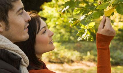 I rimedi naturali per l'autunno