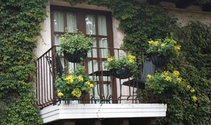 Per un balcone tutto aromatico