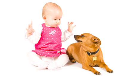 Bebè, animali e piante