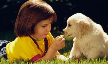 Educhiamo i figli a un corretto rapporto con gli animali