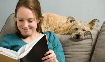 Case a prova di cane e gatto