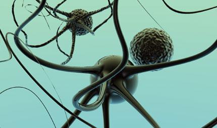 Cellule tumorali nascoste