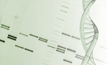 Colon-retto: diagnosi dal dna