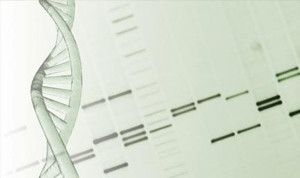 Pap Test e HPV-DNA test contro il tumore
