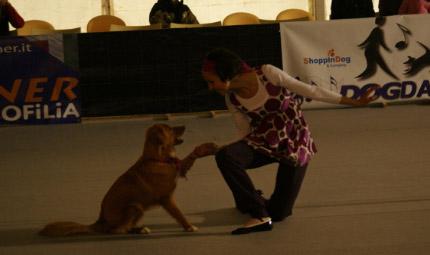 Fido e l'arte della danza