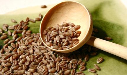 Farro: un cereale, tante virtù