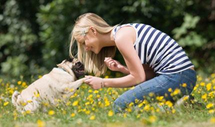 L'attivazione mentale del cane