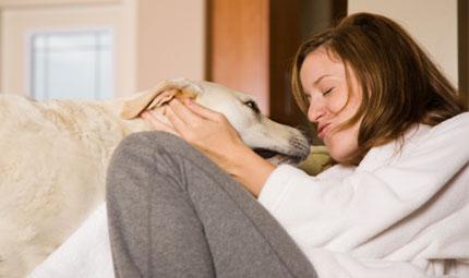 Animali e medicina olistica