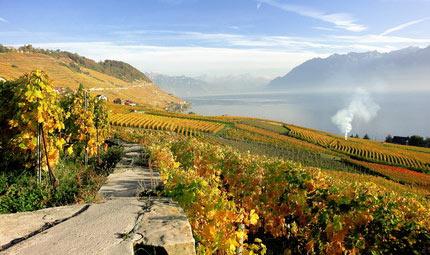 Svizzera: a passeggio tra enogastronomia e terme
