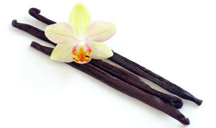 Pelle di velluto con la vaniglia